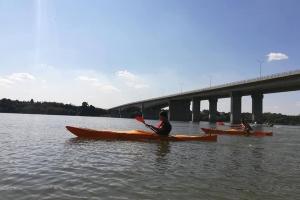 Sava bridges and great war island